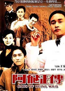 A Phi Chính Truyện (1990)