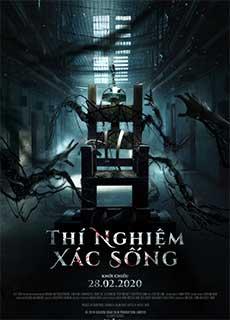 Thí Nghiệm Xác Sống (2019) Patients Of A Saint (2019)